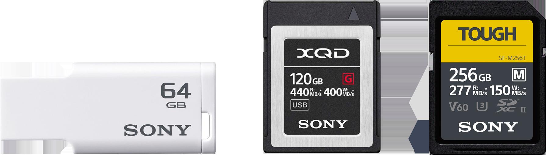 Sony Data Recovery